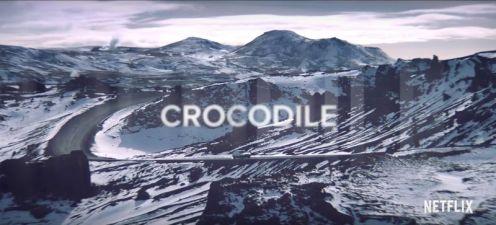 Crocodile03